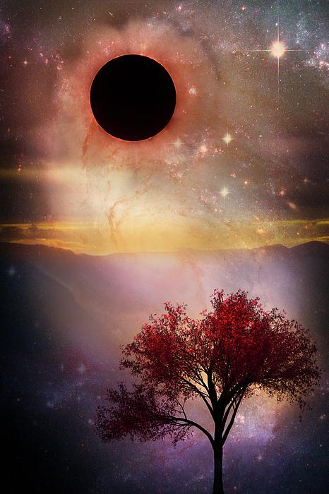 Appalachia Digital Art - Total Eclipse Of The Sun Tree Art by Debra and Dave Vanderlaan