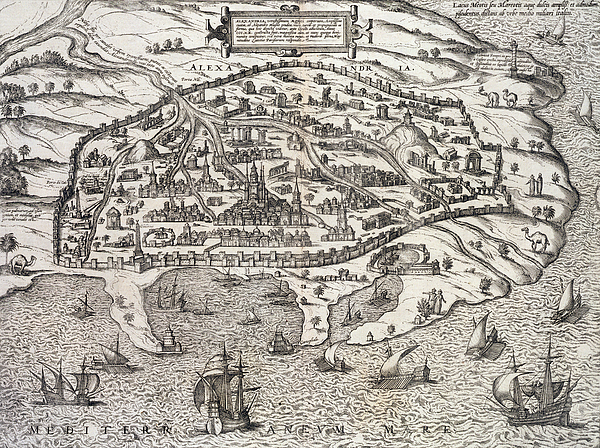 Map Drawing - Town Map Of Alexandria In Egypt by Unknown