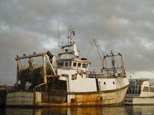 Ship Photograph - Trawler by Dan Andersson