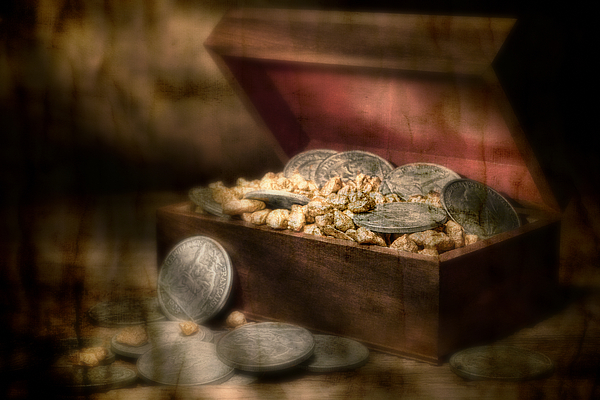 Money Photograph - Treasure Chest by Tom Mc Nemar