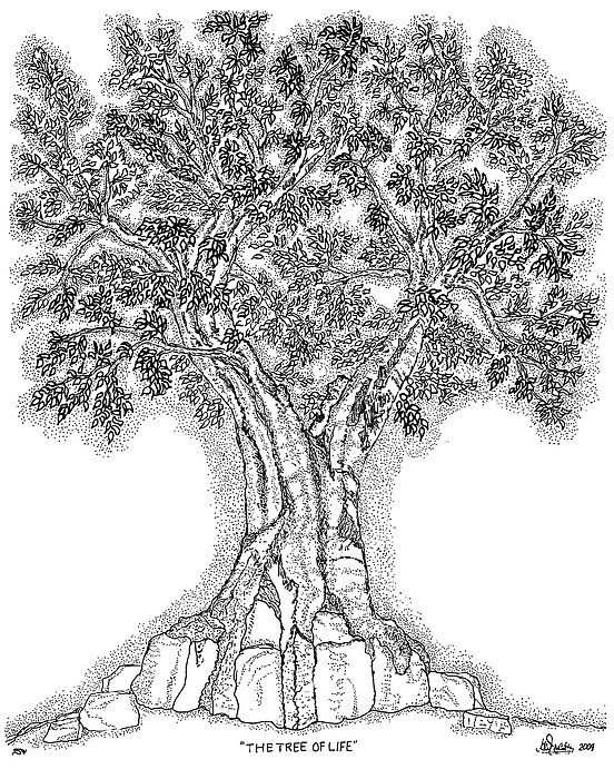 Christian Drawing - Tree Of Life 1 by Glenn McCarthy Art and Photography