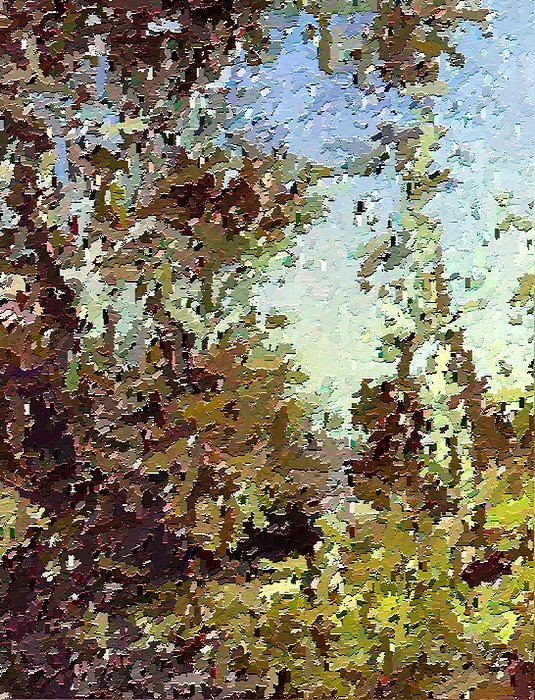 Abstract Painting - Trees In The Back Yard by Don Phillips