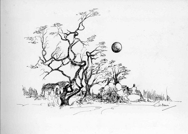 Landscape Drawing - Trees Rocks And A Ball by Padamvir Singh