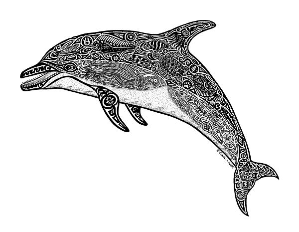 Dolphin Drawing - Tribal Dolphin by Carol Lynne