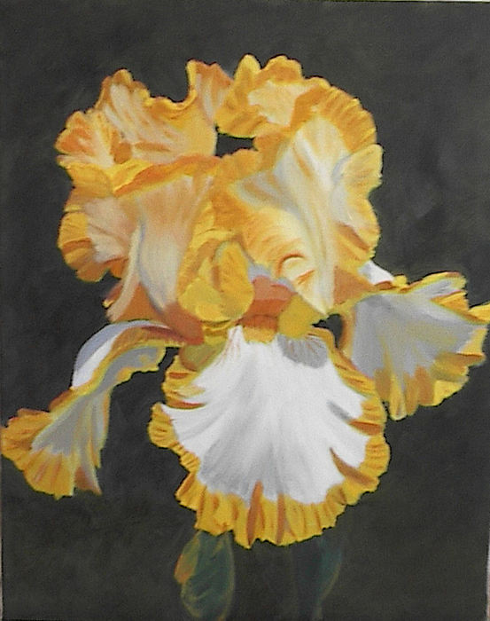 Floral Painting - Trimmed In Yellow 2 by Robert Tower