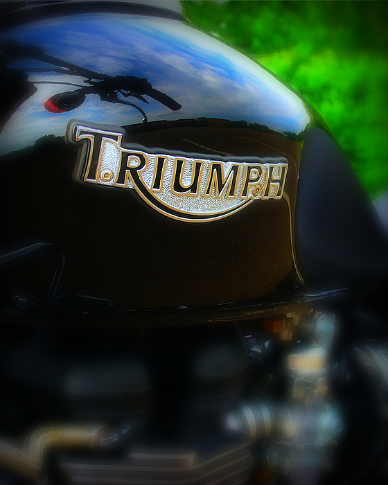 Triumph Photograph - Triumph by Perry Webster