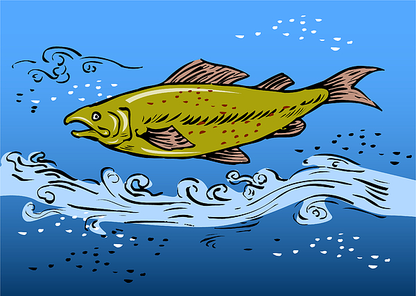 Trout fish swimming underwater digital art by aloysius for Fish swimming backwards
