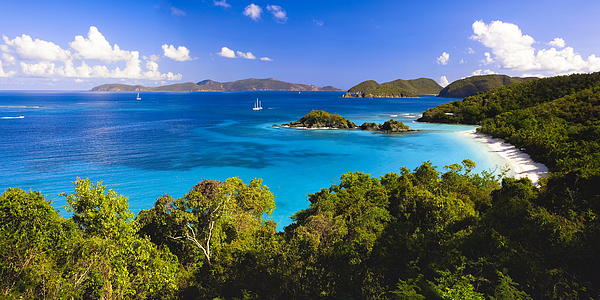 Bay Photograph - Trunk Bay Panorama by George Oze