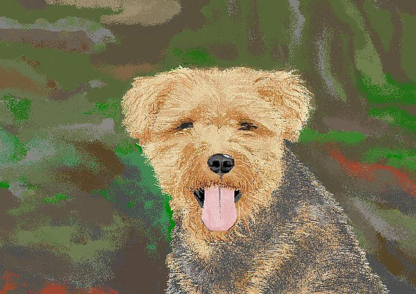 Dogs Digital Art - Tucker The Welsh Terror by Carole Boyd