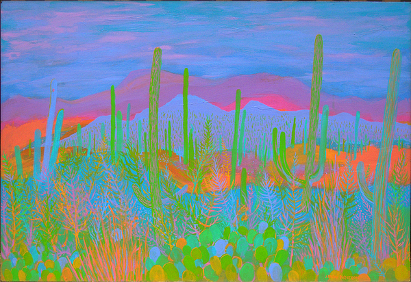 Tucson Desert Glow Painting by Philip Peterson