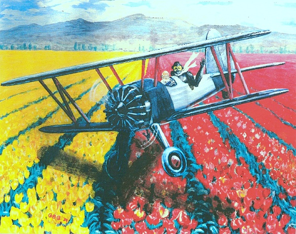 Biplanes Painting - Tulip Fly-by by George I Perez