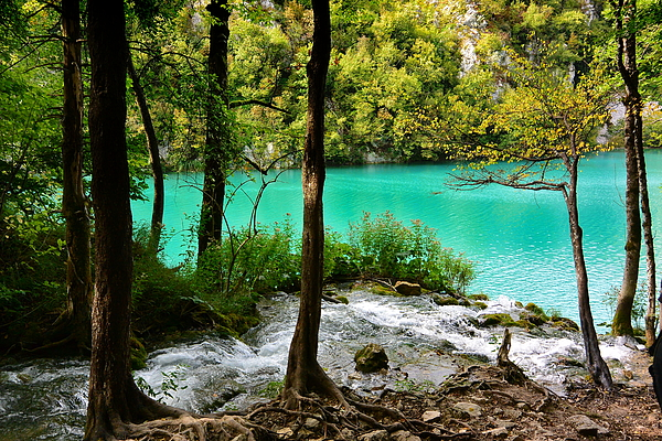 Plitvice Photograph - Turquoise Waters Of Milanovac Lake by Two Small Potatoes