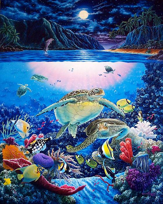 Dolphins Painting - Turtle Bay by Daniel Bergren
