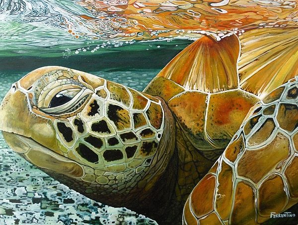 Sea Turtle Painting - Turtle Me Too by Jon Ferrentino