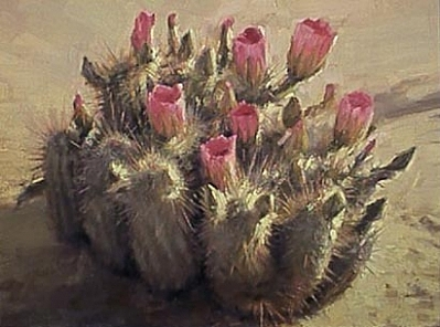 Tuscon Cactus Painting by Chuck Marshall