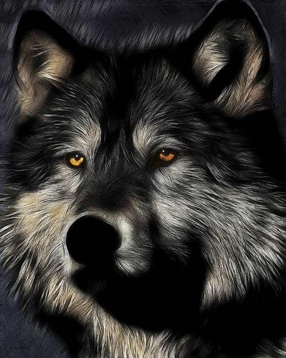 Wolf Photograph - Twilight Eyes Of The Lone Wolf by Wingsdomain Art and Photography