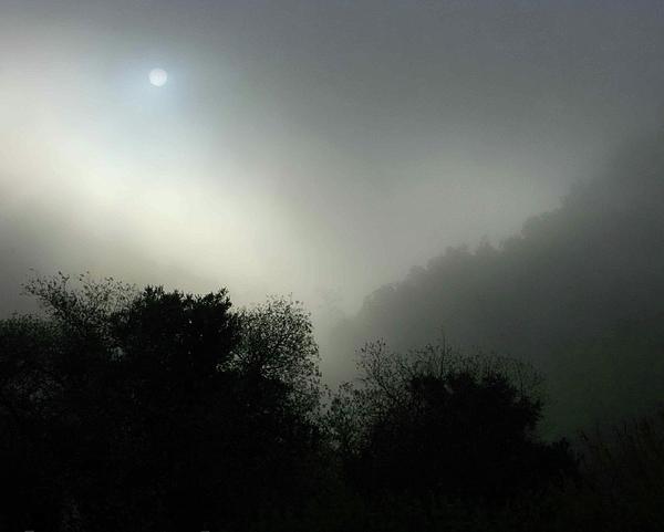 Foggy Photograph - Twilight Valley Of The Moon California by Gus McCrea