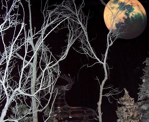 Tree Photograph - Twilight by Vicki Lynn Sodora