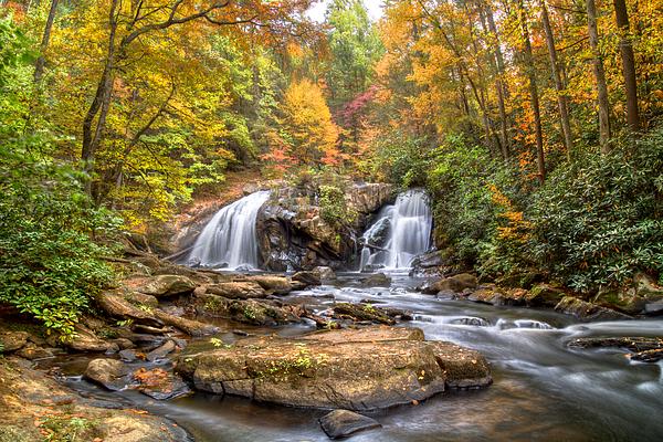 Appalachia Photograph - Twin Turtles by Debra and Dave Vanderlaan