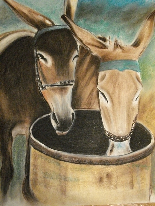 Mules Pastel - Two Of A Kind by Scott Easom