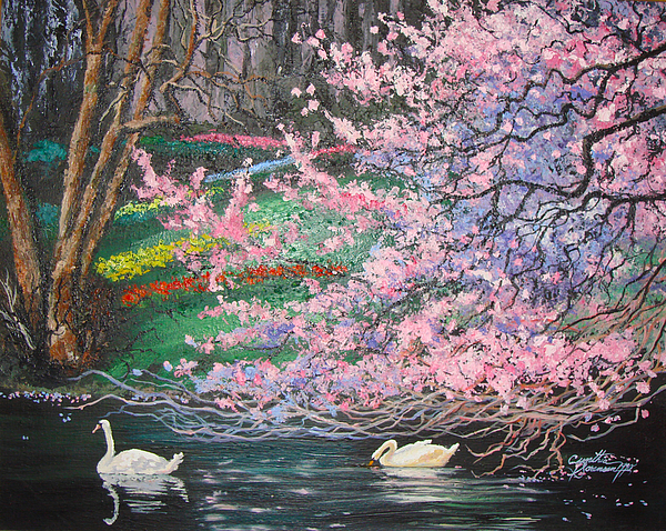 Swans Painting - Two Swans by Cynthia Sorensen