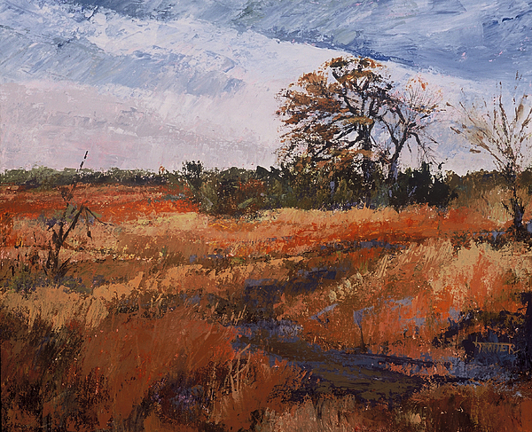 Landscape Painting - Typical Texas Field by Jimmie Trotter