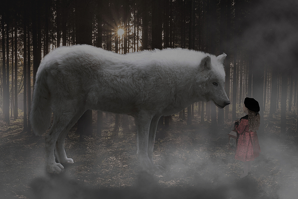 White Wolf Digital Art - Unexpected Ally by Solomon Barroa