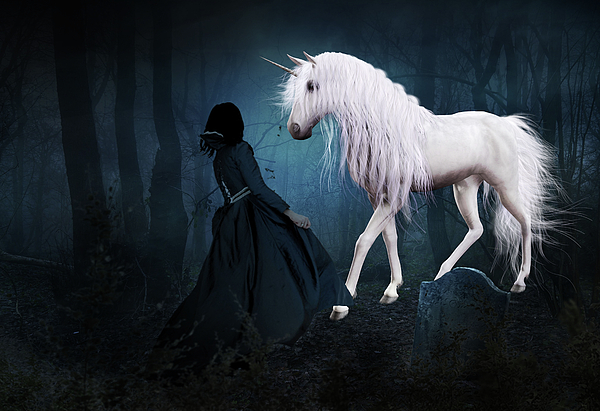 White Unicorn Mixed Media - Unique And Extraordinary by Solomon Barroa