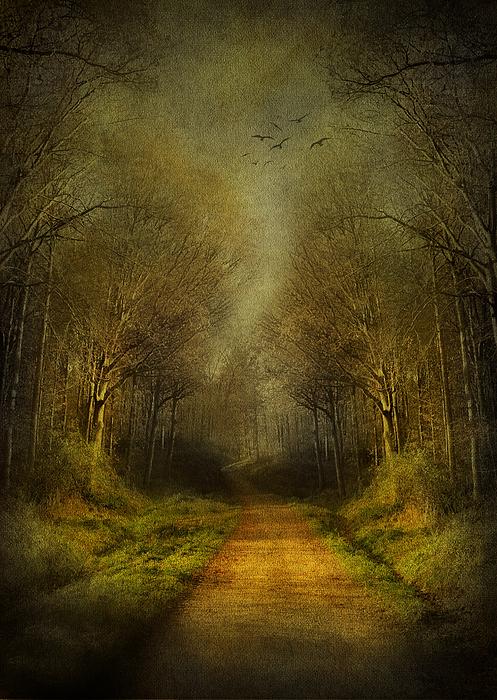Fantasy Digital Art - Unknown Footpath by Svetlana Sewell