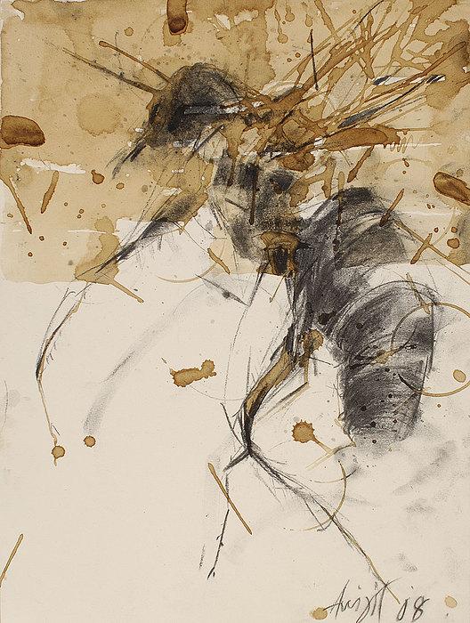 Bug Drawing - Untitled by Avijit Dutta