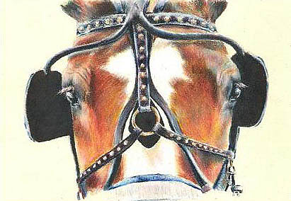 Horse Painting - Up Close And Personal by Jenifer Trottier