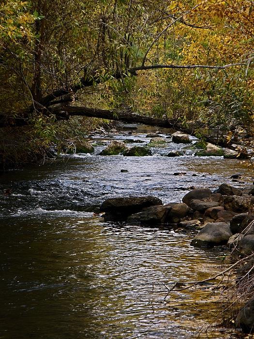 Nature Photograph - Utahs Ogden River In October by Jan  Tribe