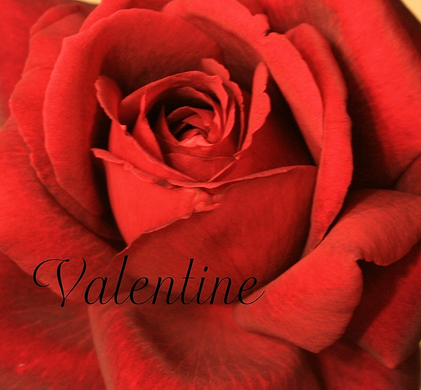 I Love You Photograph - Valentine by Marna Edwards Flavell