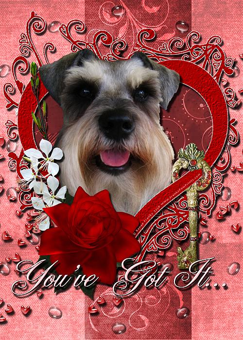 Schnauzer Digital Art - Valentines - Key To My Heart Schnauzer by Renae Laughner