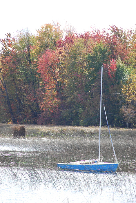 Sailboat Photograph - Vermont In The Fall. by Sharrell Holcomb