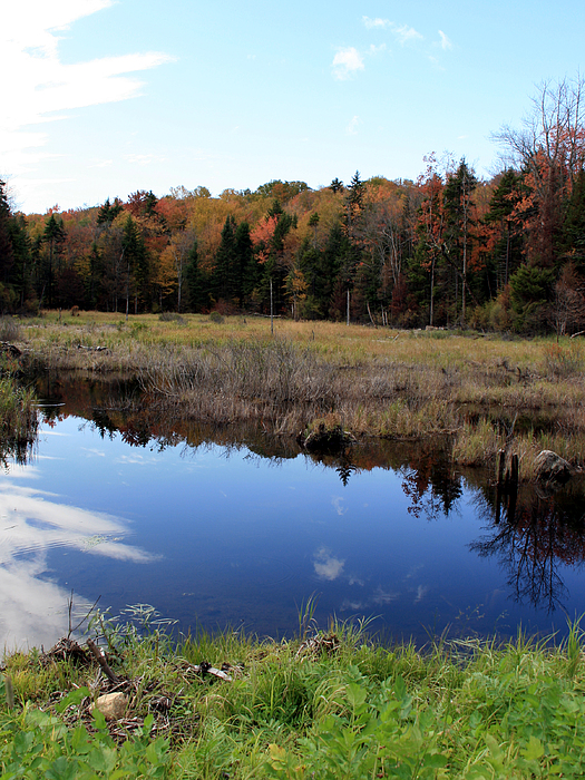Vermont Photograph - Vermont Reflections 1 by George Jones