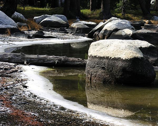 Nature Photograph - Vernal Pond Xiii by D Kadah Tanaka