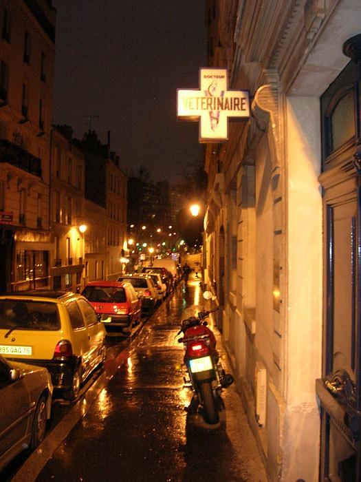 Paris Photograph - Veterinaire by Jonathan Kotinek