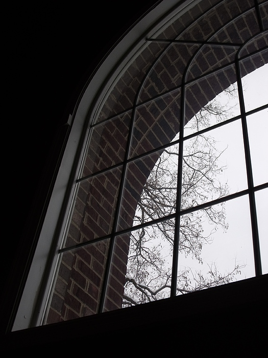 Window Photograph - View From The Window by Anna Villarreal Garbis