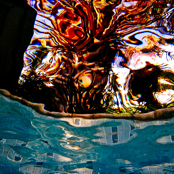 Abstract Movement Bright Blues Gold Red Modern Wavey Photograph - View Up 1 by Barbara Kelley