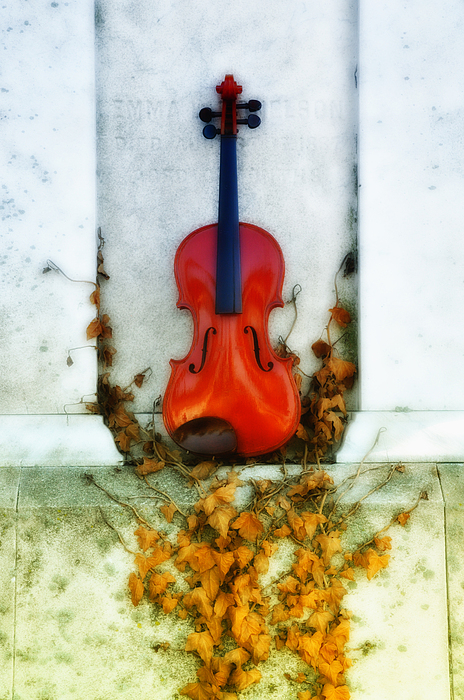 Violin Photograph - Vines And Violin by Bill Cannon