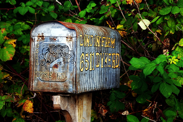 Farm Equipment Photograph - Vintage Postbox by Ming Yeung
