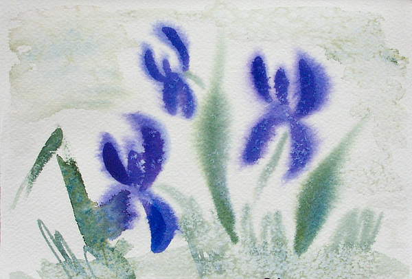 Violets Painting - Violets by Ruth Bevan