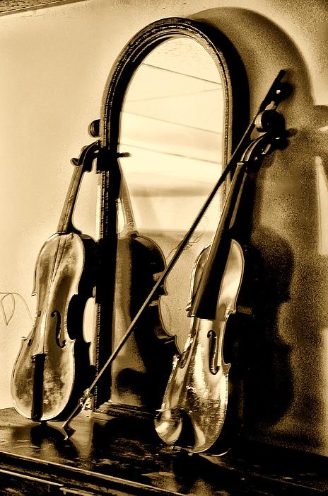 Violin Photograph - Violins by Bill Cannon