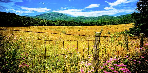 Barn Photograph - Virginia Fields Of Green by David Hahn