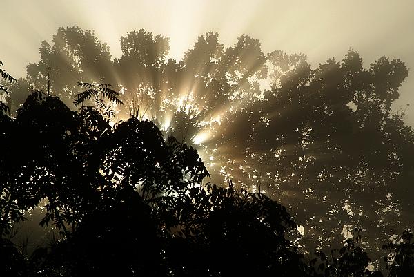 Sunrise Photograph - Virginia Sunrise by Michael McGowan