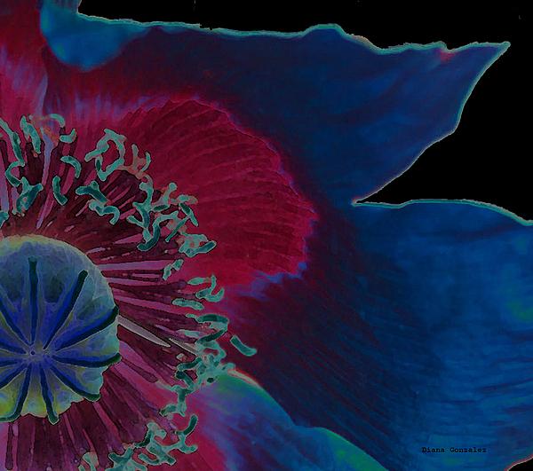 Flowers Photograph - Vivid by Diana Gonzalez