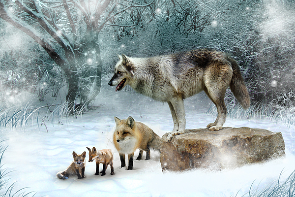 Wolf Digital Art - Vladimir Vanessa And The Vixens  by Julie L Hoddinott