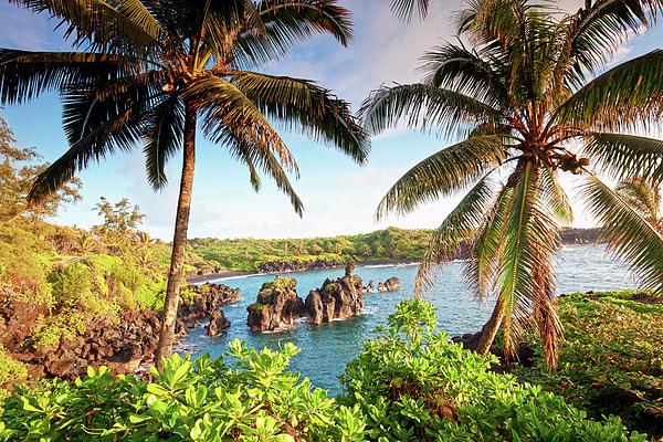 Horizontal Photograph - Wainapanapa, Maui, Hawaii by M.M. Sweet