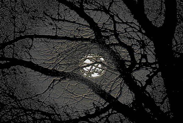 Full Moon Photograph - Waiting For Godot by Peeter Vissak
